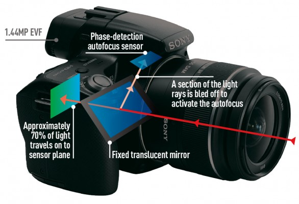 How Digital Cameras Work: Vital Information You Must Know Before You Buy