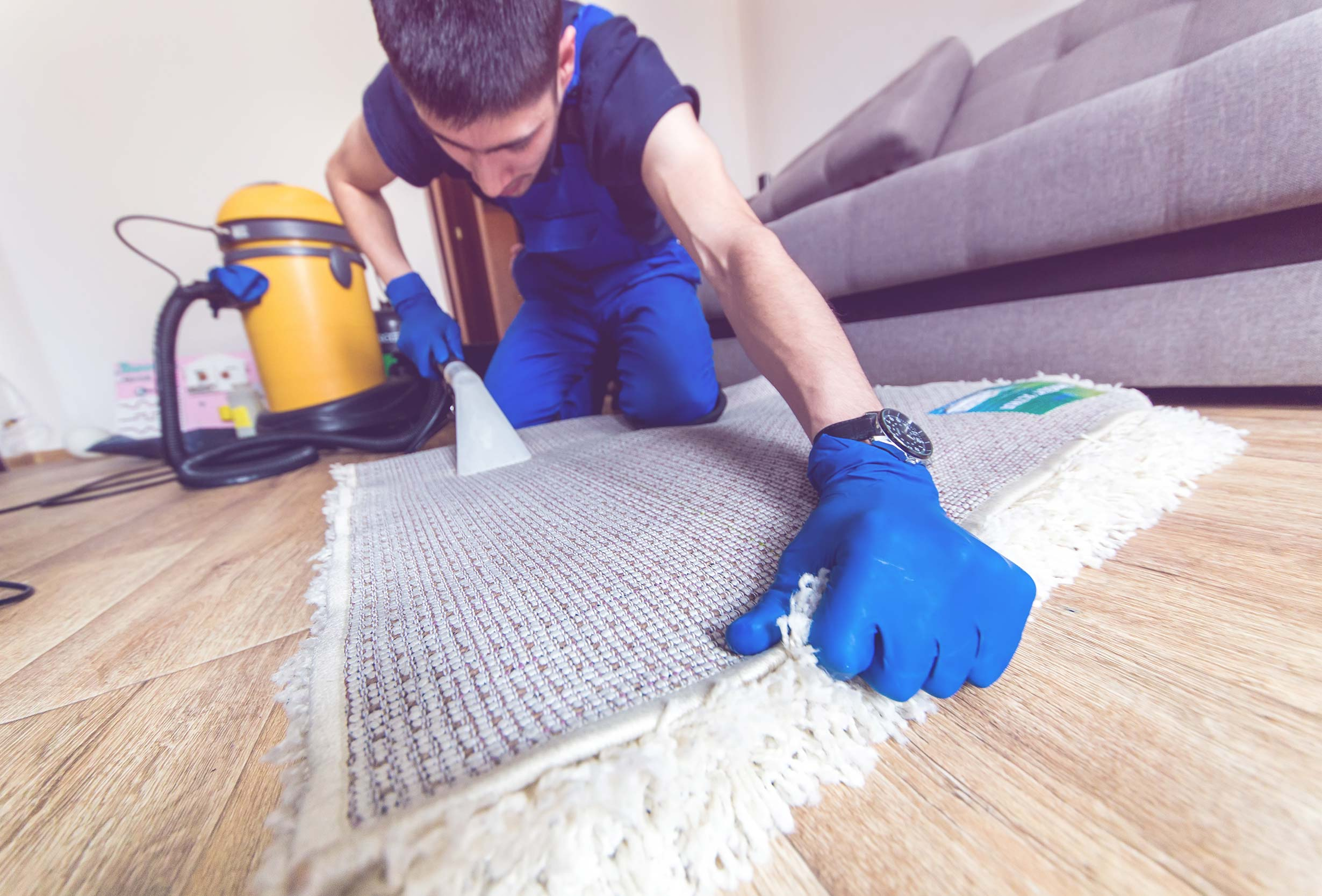 When It Comes To Hiring A Carpet Cleaner, We Have The Secrets