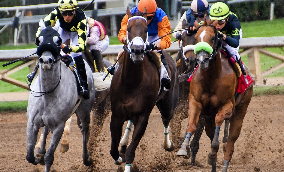 A Guide To Horse Racing